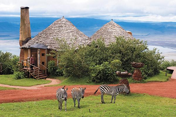 去非洲看动物大迁徙!-旅游